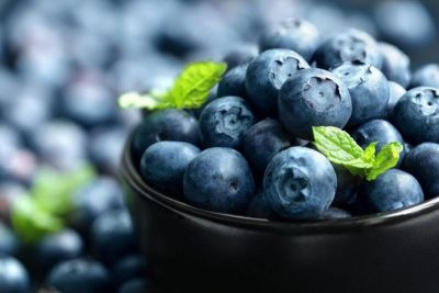blueberries-1-e1463764302262