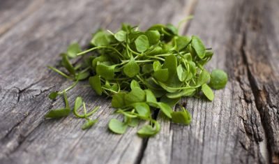 watercress-on-a-table