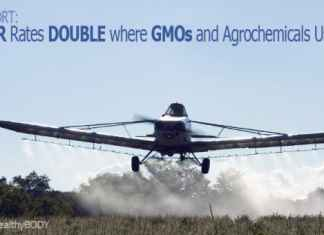 cancer rates double gmo chemicals