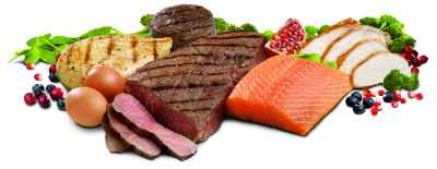 protein meat