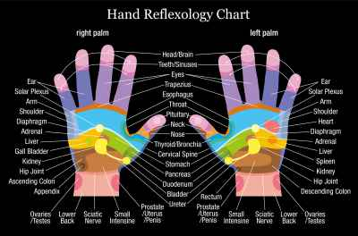 Hand reflexology chart description black