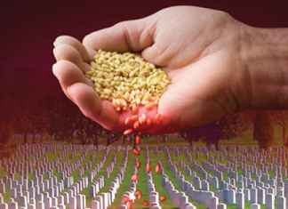 GMO Death Seeds by Monsanto