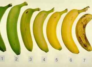never look at a banana in the same way again